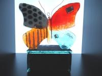 kleine glazen (duo-)urn-vlinder