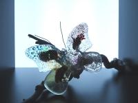 gedenkobject-vlinder