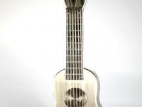 urn gitaar rvs