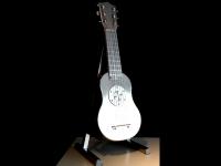gitaar urn exclusief rvs modern